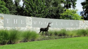 What's Happening in The Woodlands?
